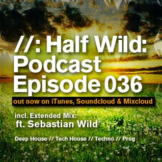 Half Wild: Podcast // Episode 036 // Extended Mix: Sebastian Wild