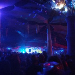 D-sens @ Rainbow serpent 2014