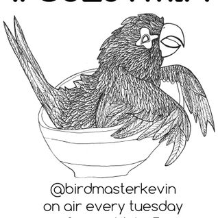 Birdmaster Kevin - RWD.FM Broadcast 11/17/2015 (Owen Williams Guest Mix)