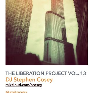 The Liberation Project Vol. 13