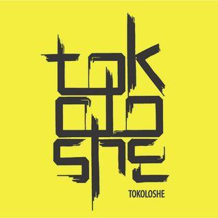 "DJ Tokoloshe - ""Melbin"" Electro House mix"