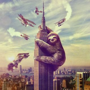 When Sloths Attack