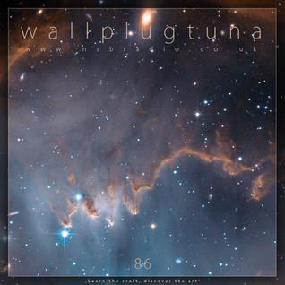 [086] WallPlugTuna on NSB Radio
