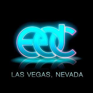 Fedde Le Grand - Live @ Electric Daisy Carnival (Las Vegas) - 09-06-2012
