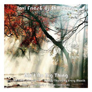 Javi Frías & dj ShmeeJay - Ain't No Big Thing - 2016-09-22