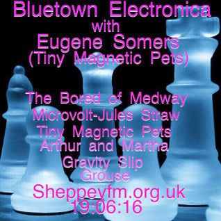 Bluetown Electronica presented by Eugene Somers