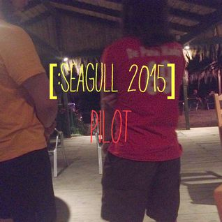 seagull 2015 - tropical pilot