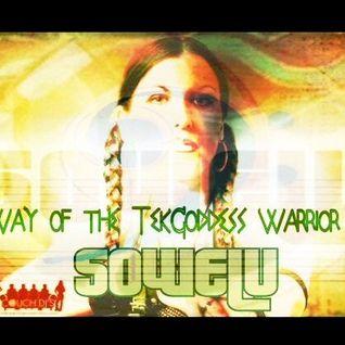 Way of the TekGoddess Warrior