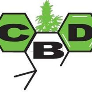 Konoplja na Radiju - CBD - 12.3.2015.
