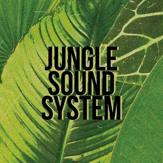 Jungle mix recorded live at Bass Goes LELE