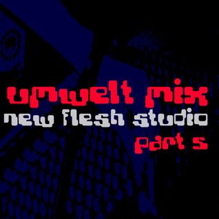 Umwelt@Newflesh Studio Part 05 (2006)