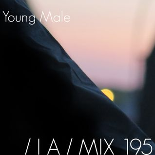 IA MIX 195 Young Male