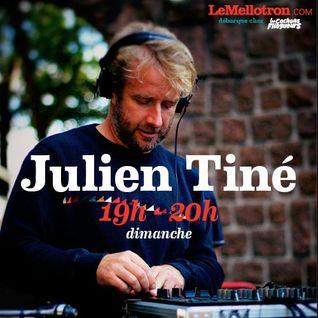 Julien Tiné • Les Cochons Flingueurs 2016 • LeMellotron.com