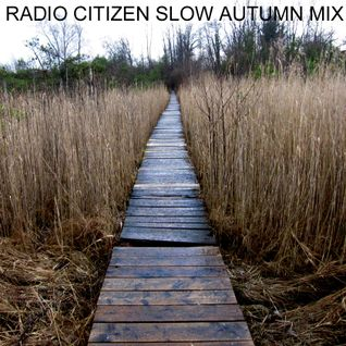Radio Citizen - Slow Autumn Mix 2010