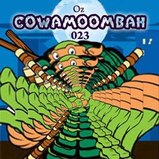 Cowamoombah023