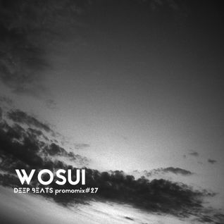Deep Beats promomix #27 - WOSUI