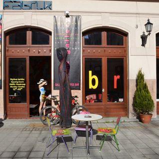 Peter Bernath b2b RoyalVic @ Fabrik Friday 31.03.2012