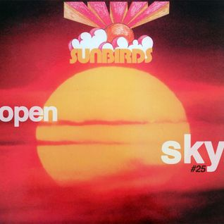 Open Sky #25 | Amampondo, Magic Source, Malinga Five, Sunbirds, Klaus Doldinger...