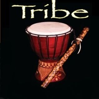 TRIBE DRUMS Vol 1 (Latin/Tribal House)
