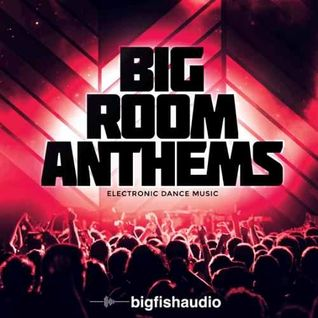 Big Room is Where You Belong mix