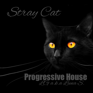 Stray Cat 150710 At Club Cat
