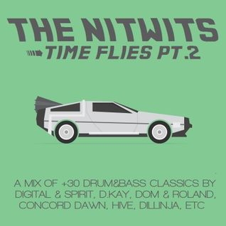 The Nitwits - Time Flies Pt 2 (dnb classics)