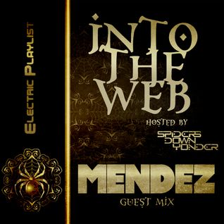 Into the Web [Live Radio mix]