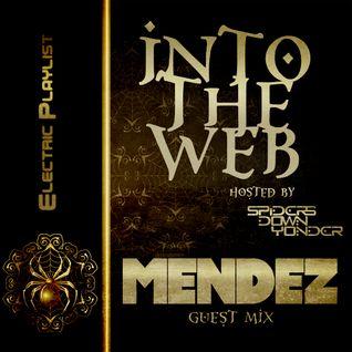 Into the Web [Live Radio mix]