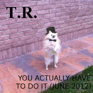 T.R. - YOU ACTUALLY HAVE TO DO IT (JUNE 2012)