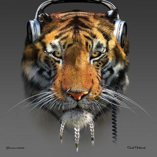 TigerRunTechno