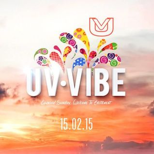 UV Vibe T&T Carnival 2015 [Mixed & Hosted By Dj Puffy]