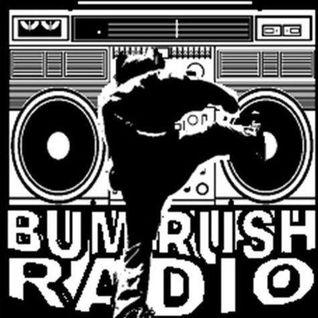 BRS OCTOBER 12 2012 WDCE 90.1 FM U OF R