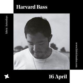 Harvard Bass - fabric Promo Mix