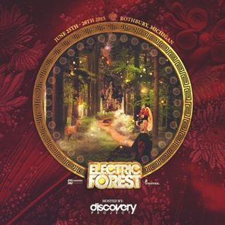 Discovery Project: Electric Forest 2015 (Dmitri Reign)