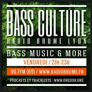 Bass Culture Lyon S10EP26A - Rylkix - Sun is back (dnb)