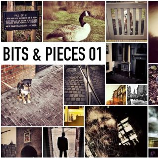 Einzelganger: Bits & Pieces 01