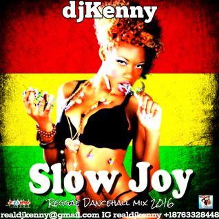 DJ KENNY SLOW JOY REGGAE DANCEHALL MIX AUG 2016