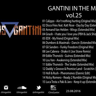 GANTINI IN THE MIX Vol.25