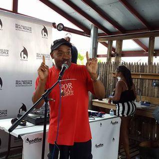 BFR Audio Fest 2015 - Radio BSOTS