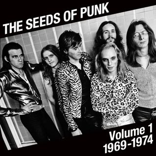 The Seeds of Punk - Volume 1 (1969-1974)