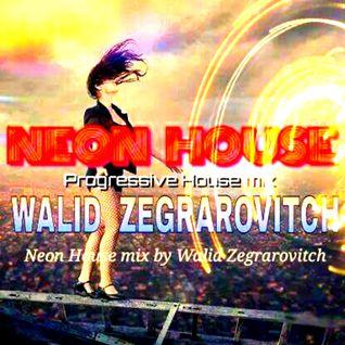 WALID ZEGRAROVITCH - NEON HOUSE 12