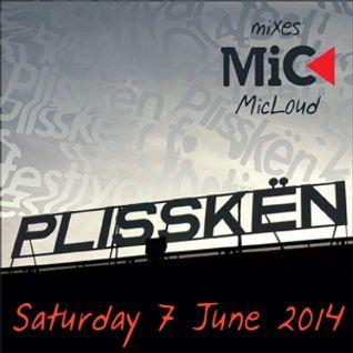 Plisskën Festival, 7 June 2014