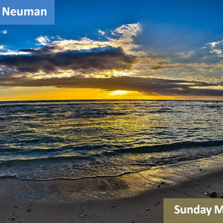 Oscar Neuman - Sunday Mix 95 (29.07.2012)