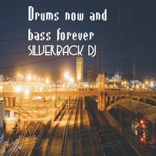 drums now bass forever silverback dj