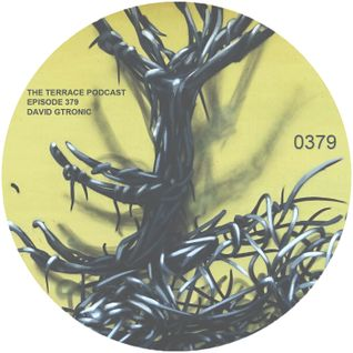 379. The Terrace :: Miami :: David Gtronic