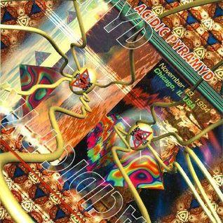 Hardfloor LIVE at Acidic Pyramid (Chicago - USA) - 19 November 1994
