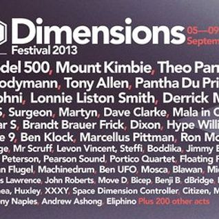 Locked Groove - Live @ Dimensions Festival (2013)
