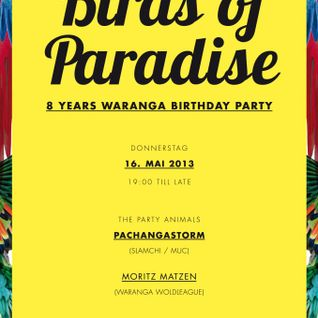 BIRDS OF PARADISE WITH PACHANGASTORM @ WARANGA STUTTGART