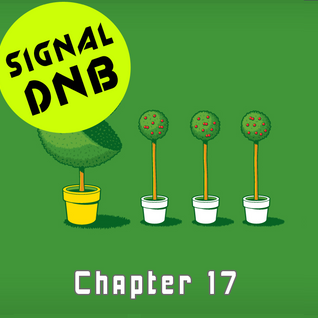 SignalDNB #17