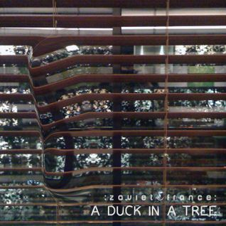 A Duck in a Tree 2014-01-11 | An Inconsistency in the Discontinuity